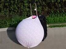 Birth Ball Cover/Carriers